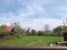 Campina -Mislea, zona pitoreasca