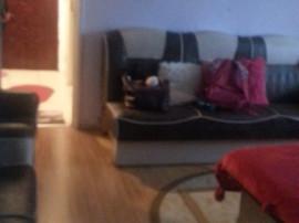 Apartament 2 camere mobilat Craiovita Noua