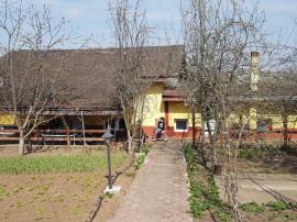 Casa / Vila P+1E, sat Plopsoru, com. Daia, jud. Giurgiu