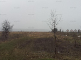 Sabareni, Padurea Raioasa, teren 7800 mp pentru case