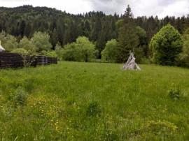 Teren zona Schitu Tarcau ideal pentru casa de vacanta