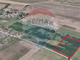 Teren de vanzare 16,750mp langa Rusciori, jud. Sibiu