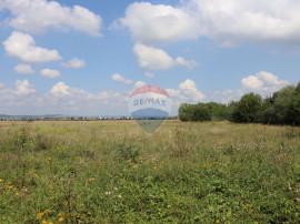 Teren de vanzare in Sibiu zona industriala Vest