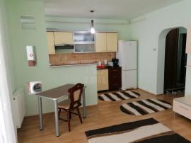 Apartament 1 camera Eroilor