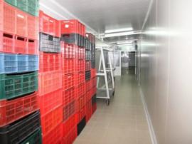 TOPOLOVENI | Fabrica de procesare carne | Acces rapid in A1