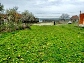 Teren intravilan in localitatea Tetchea