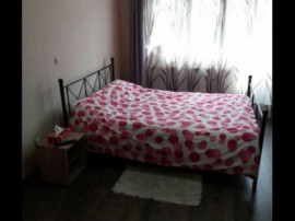Apartament 1 camera - Zona Centrala Pet Friendly Curte