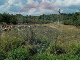 Teren Baia Mare Dura- Strada Craciuniței