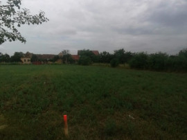 Bucovat - Teren intravilan -loc de casa - 1205 mp -Front 18m