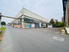 Hala - showroom - depozit, 5092-9000mp ev. renovata Tatarasi
