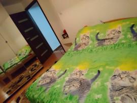 Inchiriere apartament 2 camere Snagov – Ghermanesti