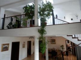 Vila Baneasa-Sisesti