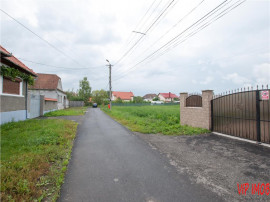 Teren cu acces la strada asfaltata in Lunca Calnicului