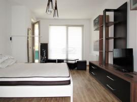 Apartament cu 1 camera in Platinia Mihai Viteazu