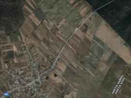 Teren 2.000 mp construibil pe DJ 602, în Săbăreni