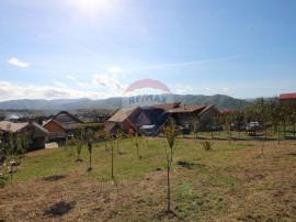 Casa cu teren generos in Cisnadie