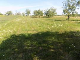 Teren 4780mp, teren situat in varful serpentinele spre Paleu
