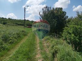 Teren 5,754mp Oradea / Strada Prunilor