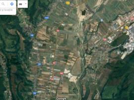 Teren Micesti, 10 km de pitesti, stradal 1257mp