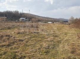 INEX.ro | Teren în Bascov | Prislop | 2.688 mp