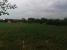Bucovat - Teren intravilan -loc de casa - 1137 mp -Front 17m
