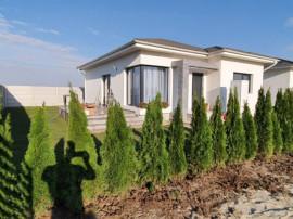 Casa single /P+Pod/ teren 300 mp, in Clinceni