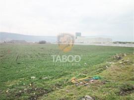 Teren de 5000 mp in Petresti judetul Alba