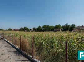 Două parcele de teren in Șimand