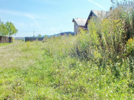 Coldwell Banker Alpin: Teren pentru constructie casa