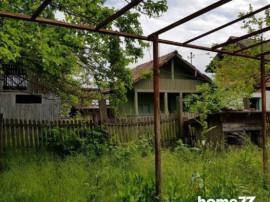 Casa batraneasca sat Lintesti