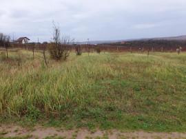 Teren Zona Parc ind II , 6400 mp , FS 45 , curent bun Hala