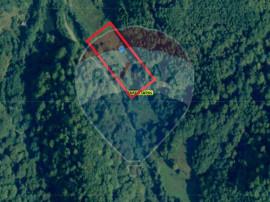 Teren 5,459 mp Târgu Lăpuș/Cuculbata/Lighet