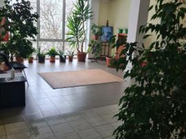 Birou zona Aradul Nou