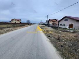 NOVISIMO-IMOBILIARE : VANZARI TERENURI IN BUCOV