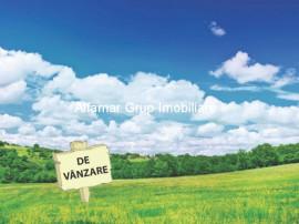 Ideal investitie, teren 9.200mp, Magurele- Padure