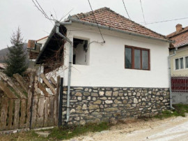 Casa / Pensiune Livezile