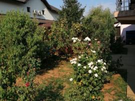 Casa individuala, cu spatiu comercial, stradal in Berceni!