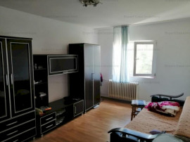 Apartament 2 Camere Decomandat Nicolina1