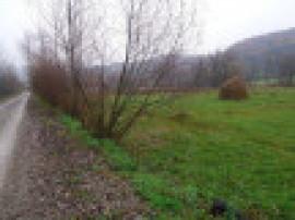 4 parcele de teren intravilan in sigehtu Marmatiei 5500mp
