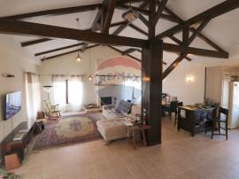 Casa de lux in Cisnadie
