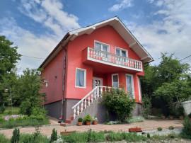 Casa Valea Jelnei
