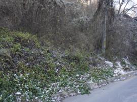 Teren in Schei, zona Dealul Spirii 780mp