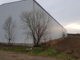 Hala industriala noua Jilava