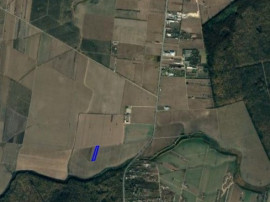 Teren intravilan Tancabesti, 6.585 mp, D:32 m, apropiere DN1