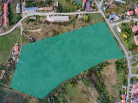 Teren intravilan 32500 mp Arad Strada Constituției