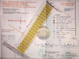 Oportunitate: Parcele de teren in Betfia D P E M