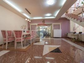 Vilă + Apartament de vânzare, in Vladimirescu