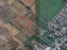 Afumati, Doraly, teren intravilan comercial 4000 mp