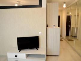 Pitesti, Apartament 2 camere mobilat si utilat, balcescu
