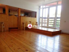 Apartament singur pe etaj in Vila Aviatorilor, Bucuresti